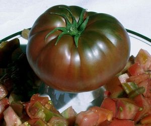 Tomato Black Krim - heirloom