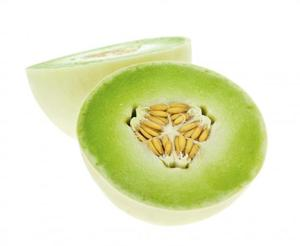 Melon Honeydew Green