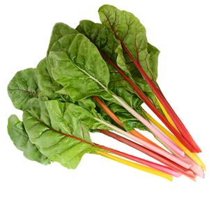 Swiss Chard Five Color Silverbeet
