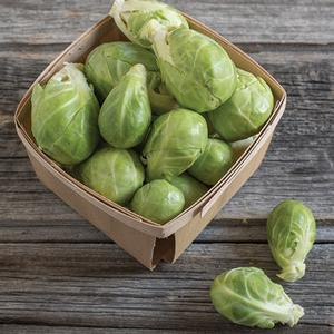 Brussel Sprouts Degan